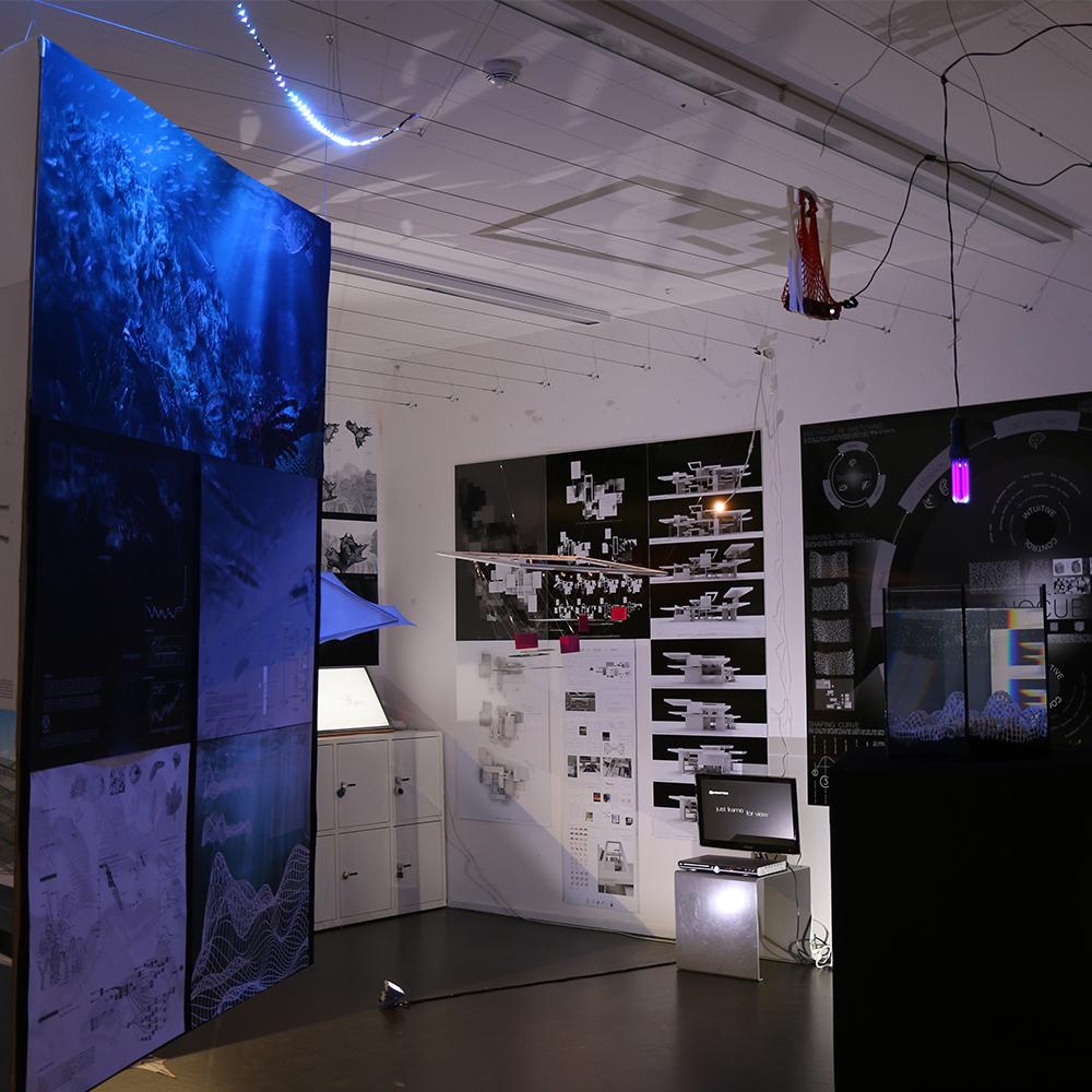 Jan Kvita | Reef Revive