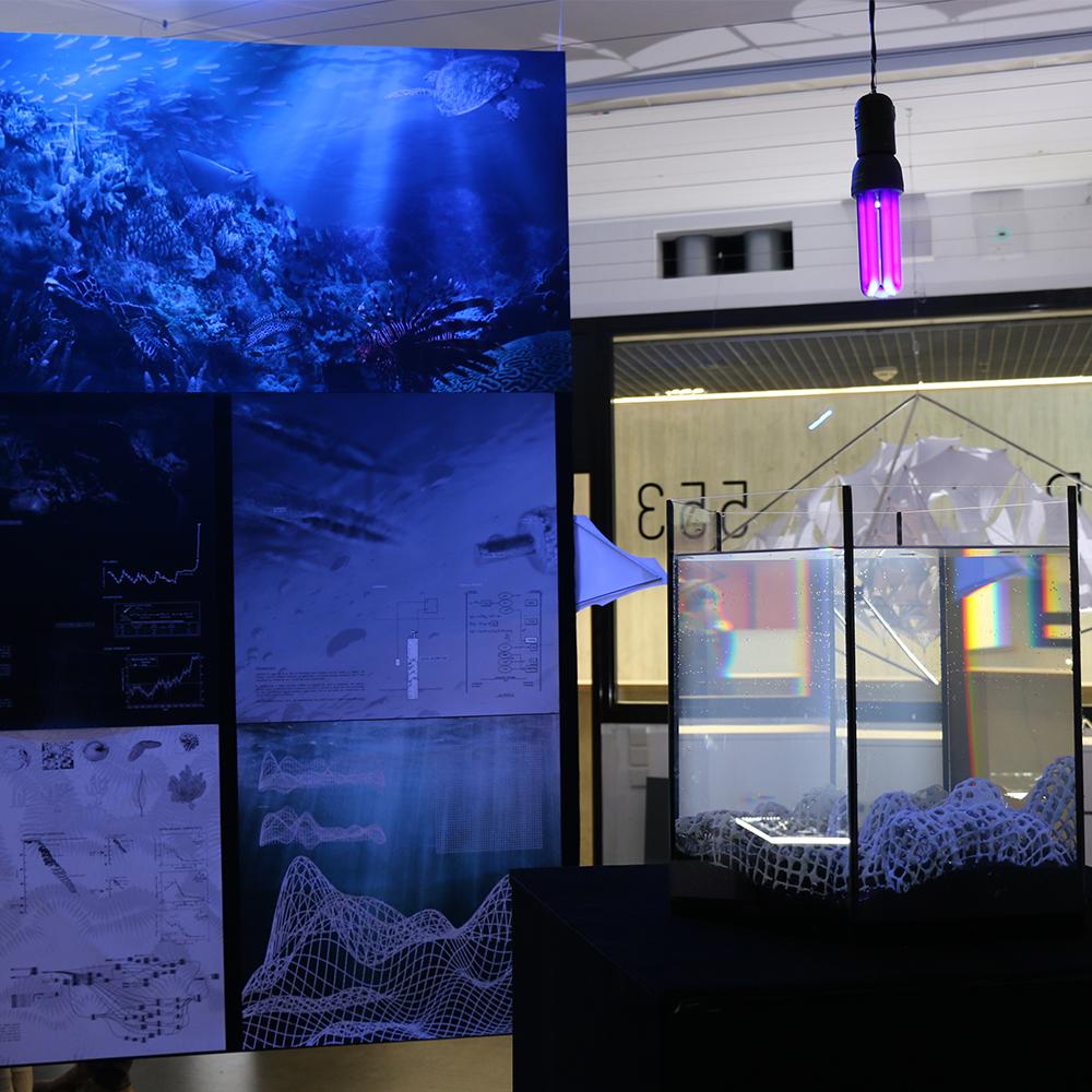 Jan Kvita   Reef Revive