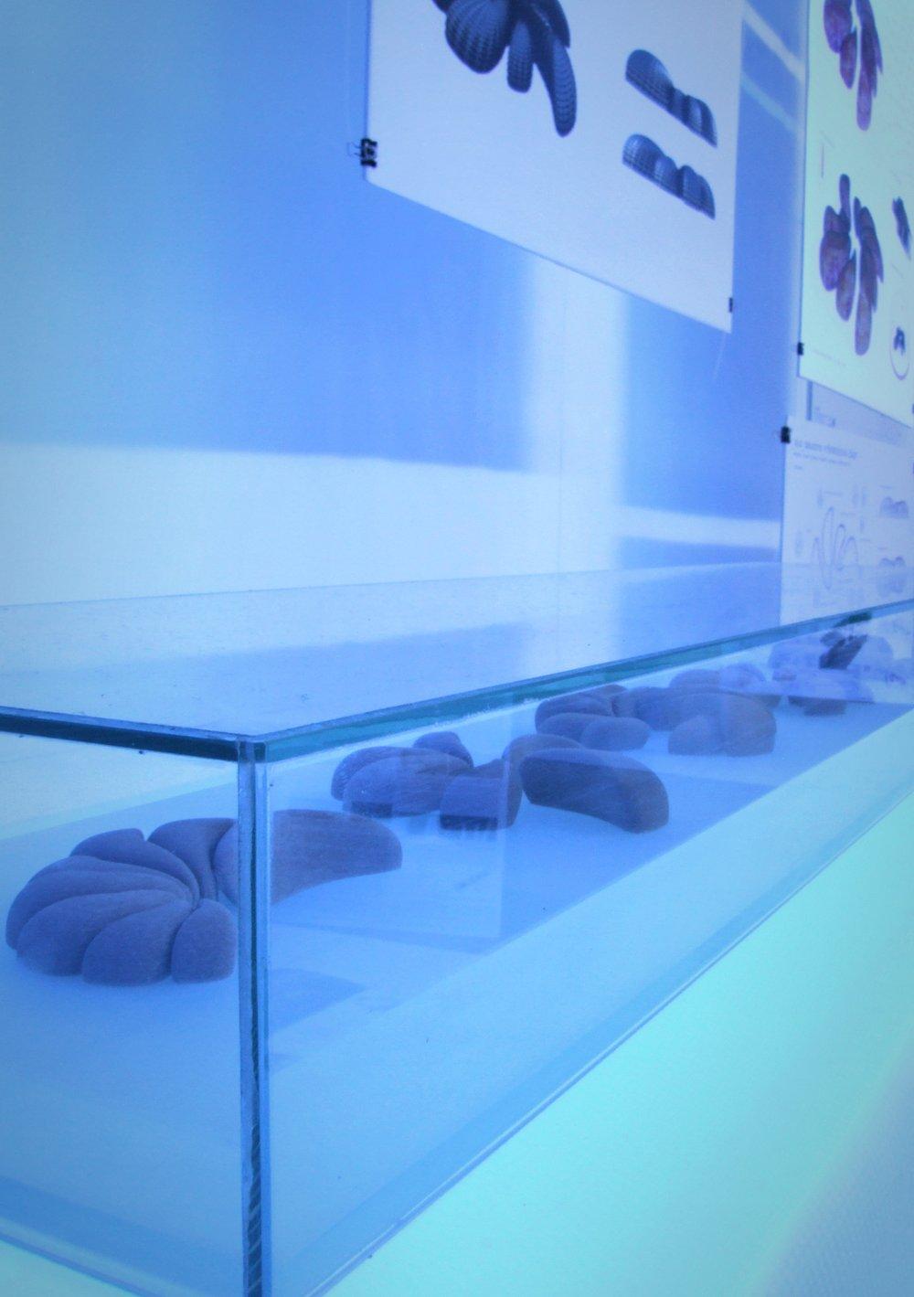 Instalace | zimní semestr 2009/10
