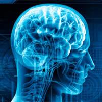 Ondřej Tomšů: Brain play project