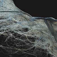 Jakub Trčka: BOT - Biologization of tectonics